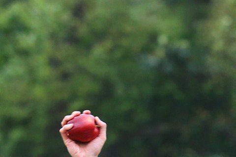 唱紅「孤單北半球」的歐得洋即將推出新作「因為有你」,昨天請來堂娜與施易男為首波主打「時間的河」拍MV,但好事多磨,延遲6小時才開工,漫漫時間真等成河。