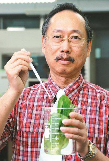 師大化學系教授吳家誠。 本報資料照片