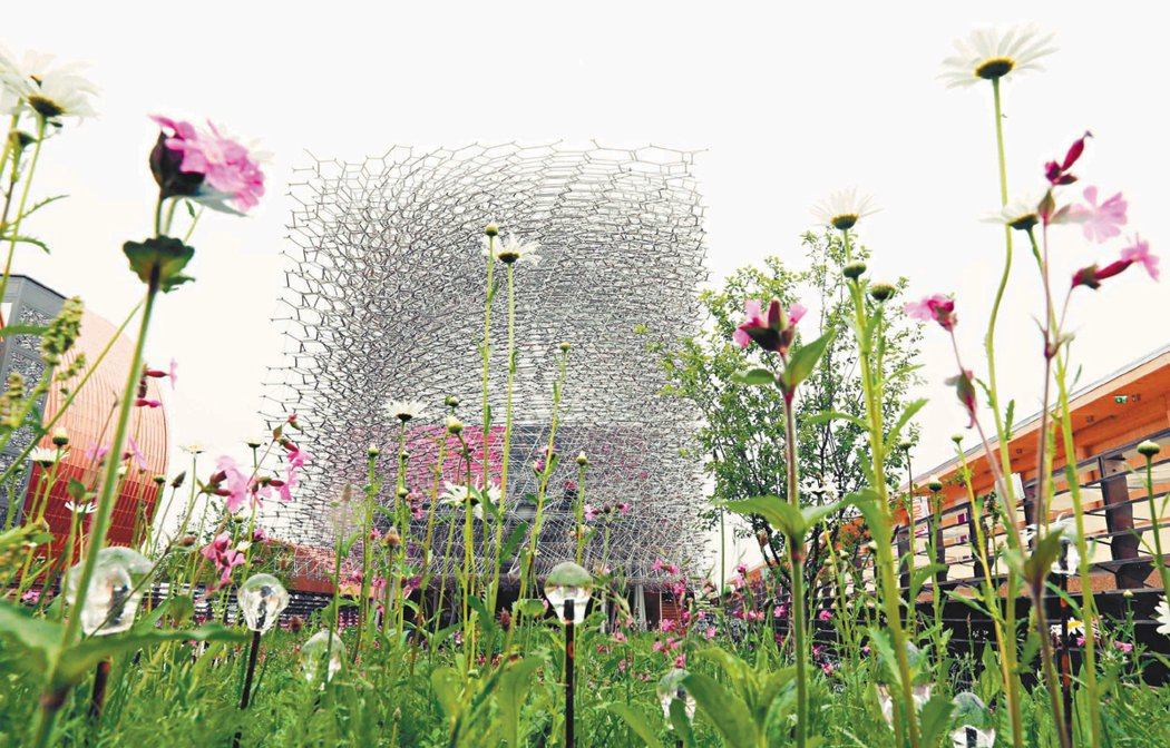 英國館建築則以蜜蜂為題,建築外觀遠看像一個被果園圍繞的「巨型蜂巢」。 記者林俊良...