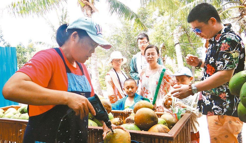 水往上流市集椰子汁熱賣,攤商常忙到手痠麻。 記者謝龍田/攝影