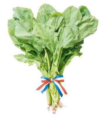 菠菜。 記者陳立凱/攝影