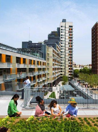 「綠色大道」合宜住宅有綠屋頂可供居民種植蔬果。  圖擷自Via Verde