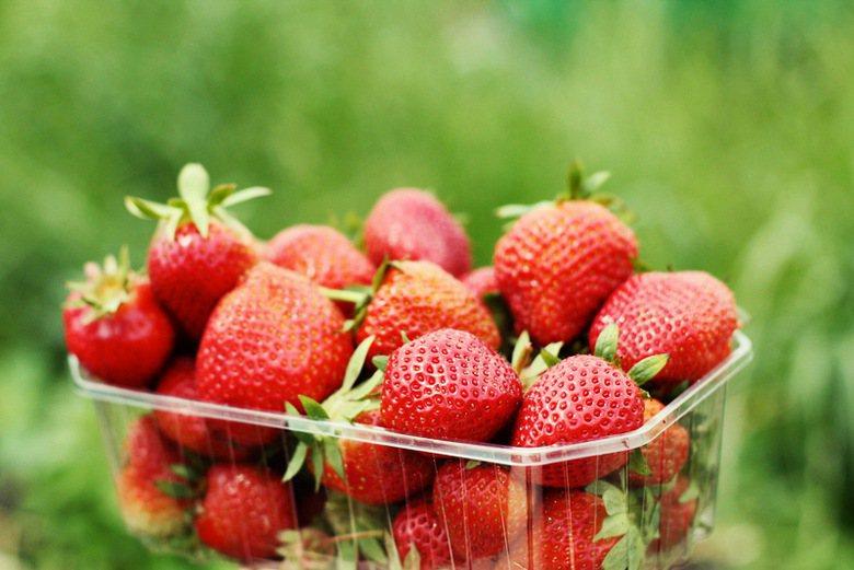 優良「草莓族」生存指南:照做就不會被罵囉~