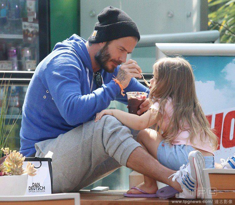 貝克漢日前餵食小哈潑,展現濃濃的父愛。圖/達志影像