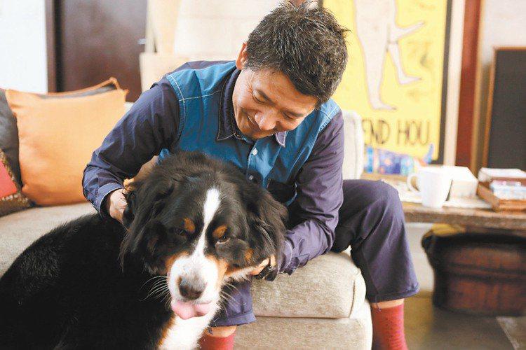 害羞的愛犬看到主人,忍不住撒嬌。記者陳立凱/攝影