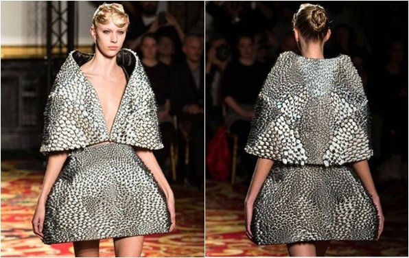今年的巴黎時裝週 Iris van Herpen 宣稱推出了全世界第一款以3D列...