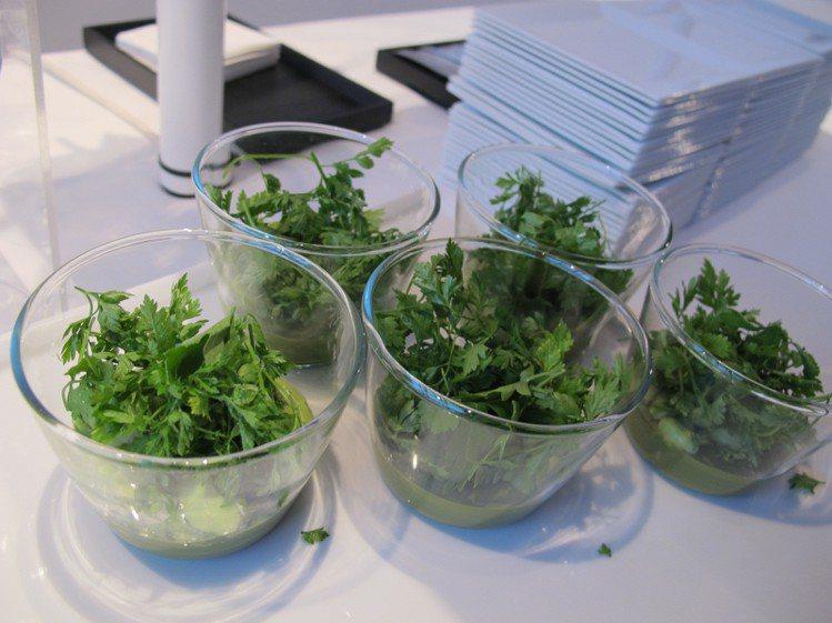 愛馬仕派對提供的美食標榜低卡、健康。記者陶福媛/攝影