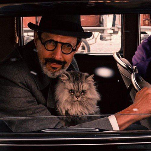 傑夫高布倫(Jeff Goldblum)在戲中留有性格的雙色鬍。圖/福斯探照燈提...