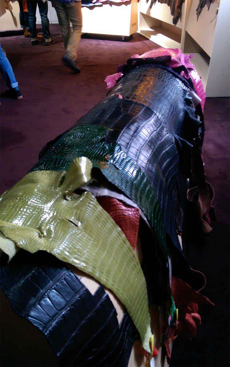 工匠的工作室展出各種珍稀皮革。記者吳曉涵/攝影