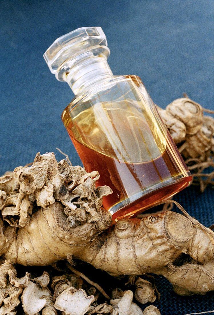 藍薑分餾科技萃取成分,作為香奈兒山茶花保濕水精華的抗氧化力。圖/香奈兒提供