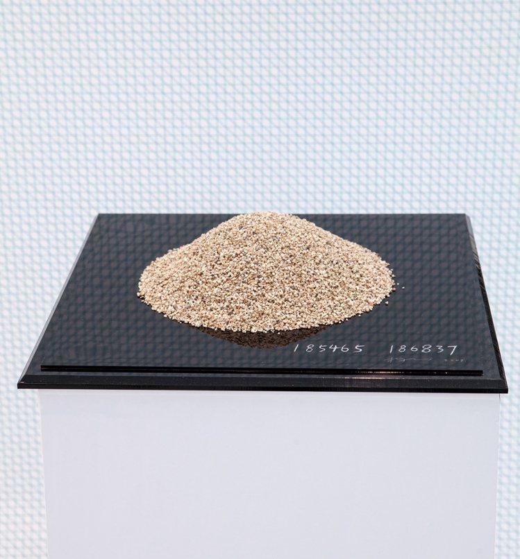 中國藝術家楊心廣花了很多時間來數砂堆裡頭的砂粒,這是個需要專注力的工程,不過因為...