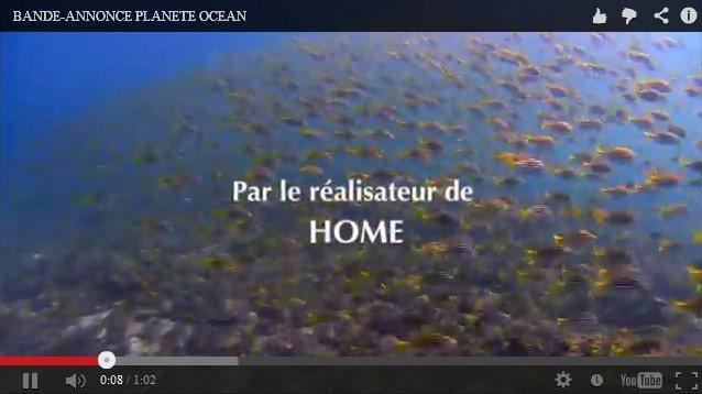 OMEGA與GoodPlanet合作拍攝海洋環保電影Planet Ocean。圖...