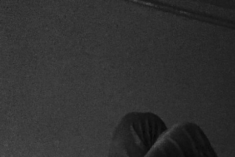 大仁哥和又青姊在2015年「成為了一家人」,不過卻是台灣的李大仁陳柏霖,和韓國的程又青河智苑,兩人互相合作,陳柏霖將加盟河智苑的經紀公司,河智苑的中港台活動也由陳柏霖的經紀公司規劃,兩人成為海外的事...