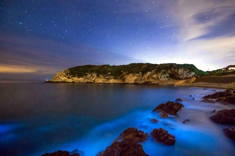 馬祖列島在春夏之交大量出現夜光藻,當地人稱「藍眼淚」 圖/連江縣政府提供