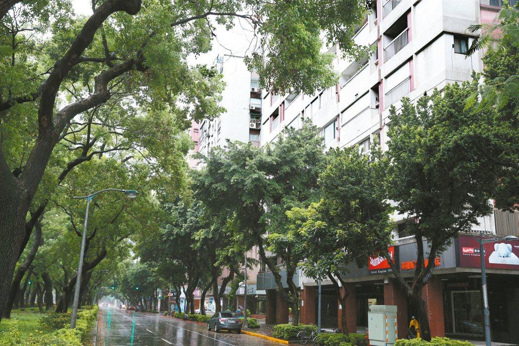 林蔭大道周邊住宅,通常鄰近學校或政府機關,環境單純,房價多較同一行政區高。圖為台...