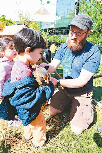 西雅圖民間組織「耕作」舉辦可食植物拍賣市集,讓小孩接觸家禽。 記者林伯東/美國攝...