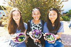 在大地學習…美國可食校園 菜園裡上科學課