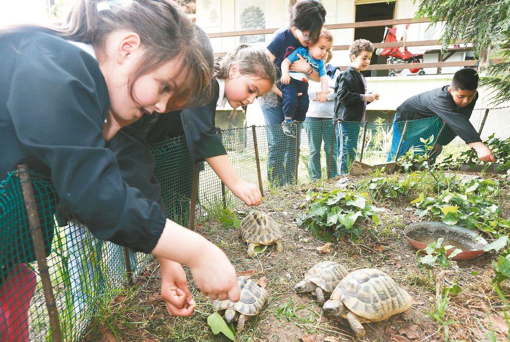 伊得亞多小學慢食菜園計畫,學生接觸菜園,在遊戲中了解土地、農作和環境的價值,感官...