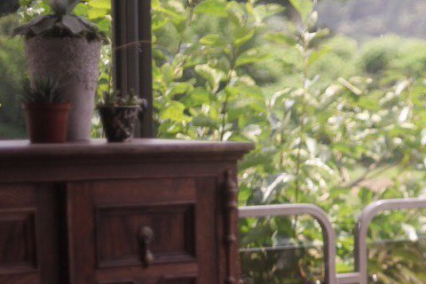 王力宏、蕭亞軒指定的編舞老師大隸,帶著全創作專輯「大隸式」出擊,勇闖歌壇,首波主打歌「再給點時間」MV請來愛紗跨刀,2人大談生死戀,只見大隸一下從後環抱愛紗跳貼貼舞,一下又臉貼臉玩起拍立得,互動有如...