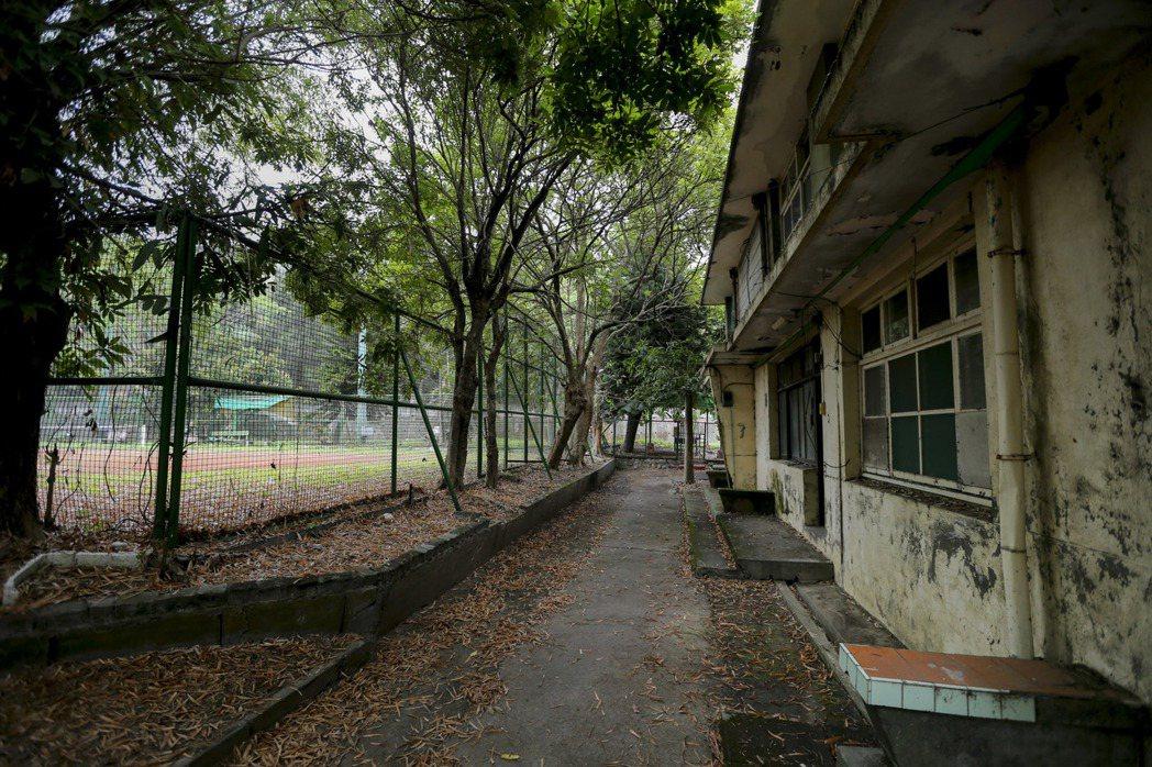中興新村老宿舍群有許多房舍已無人居住。 記者黃士航/攝影