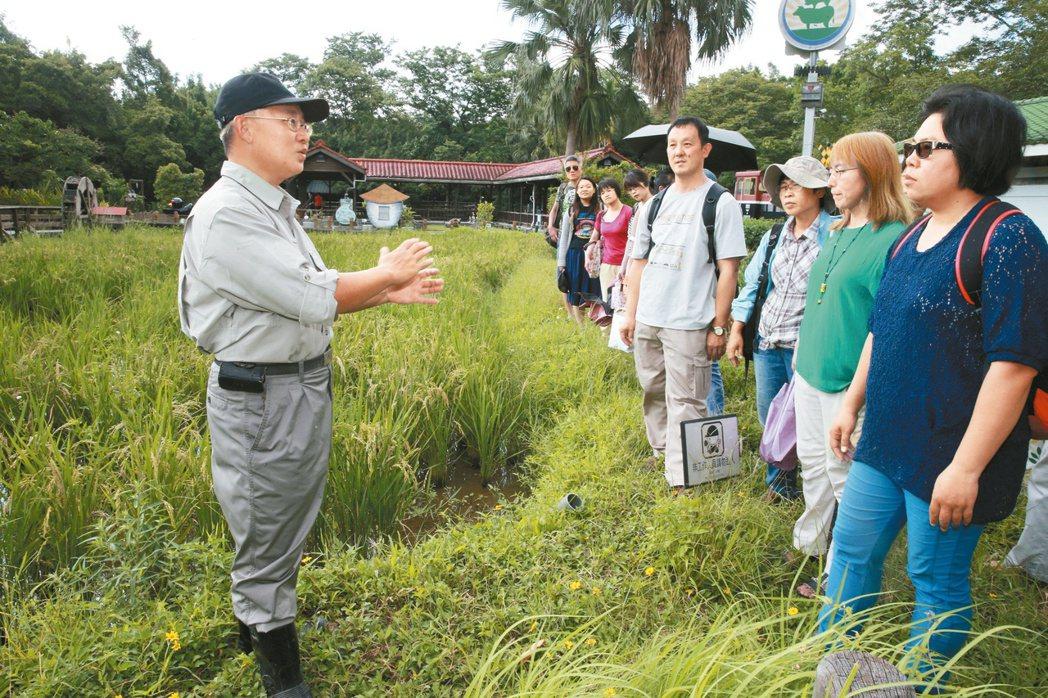 農糧署食育種子教師培訓,農民、小老師分組設計教案。 記者黃義書/攝影