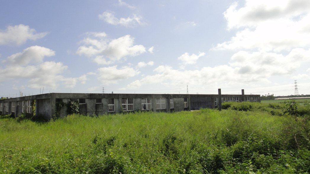 崁頂長期照護中心淹沒有荒煙漫草中。 記者蔣繼平/攝影