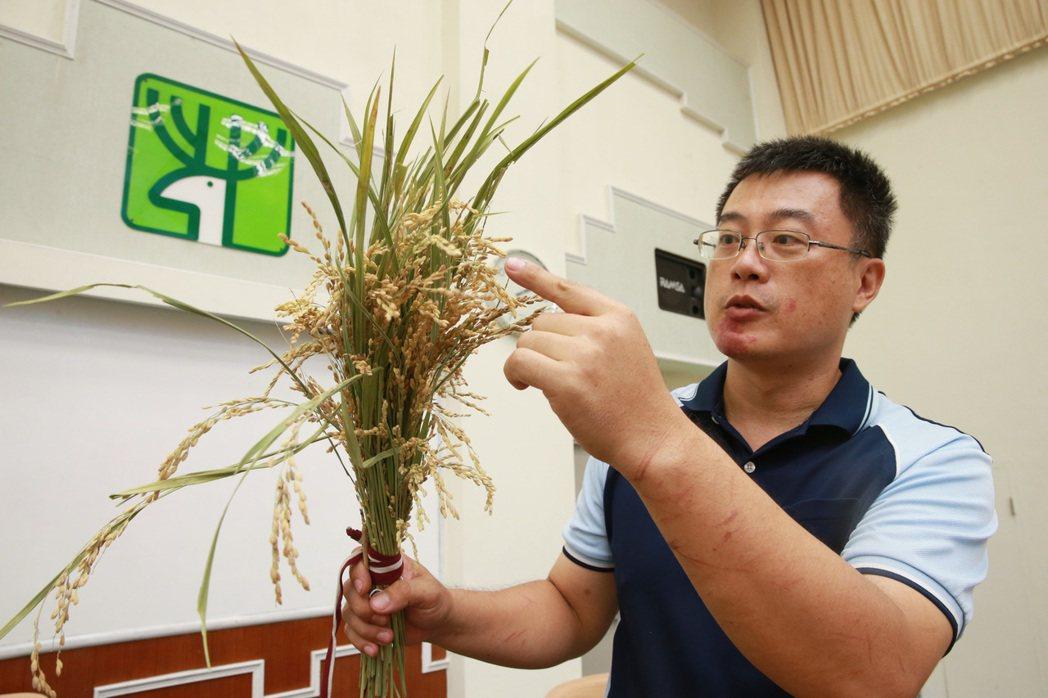 104食農、食米種籽講師初階課程。 記者黃義書/攝影