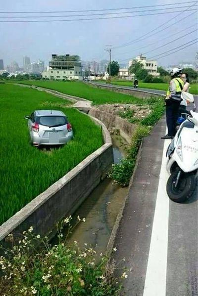 台中市西屯,有網友拍到一名女車主把汽車開進田裡。圖片來源/ 批踢踢