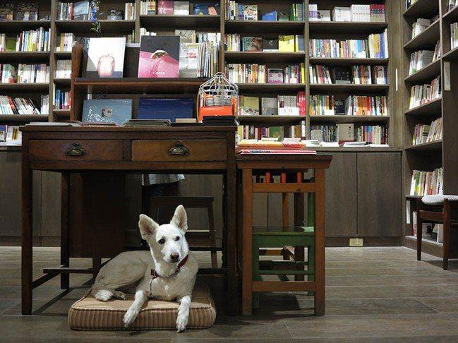 與歷史共存的書店「三餘書店」藏身老屋,是港都高雄第一家獨立書店。 圖/夢田文創提...