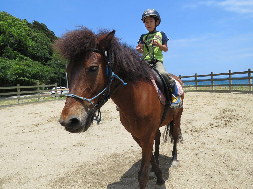 粟島小學生的生活課有全日本獨一無二的騎馬課。記者雷光涵/攝影