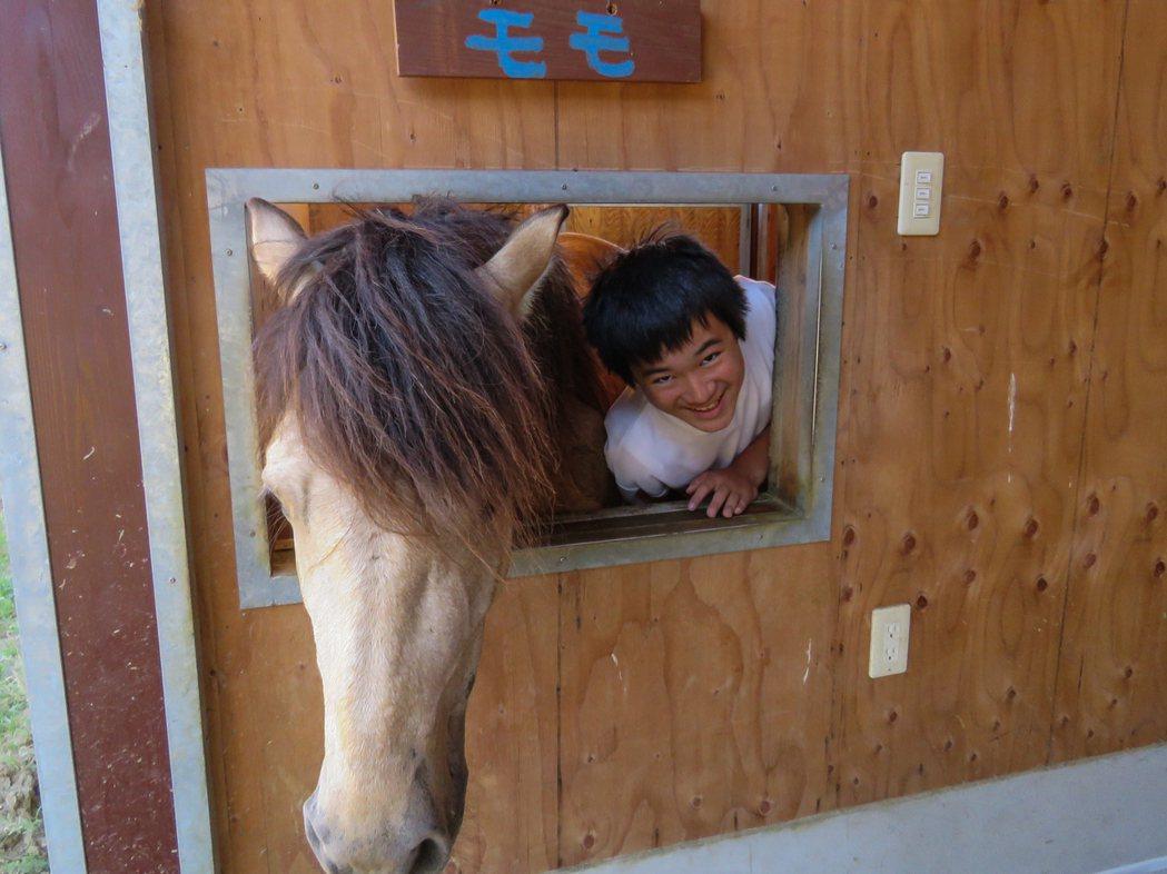 十三歲的柳谷駿斗說,未來想從事與馬相關的工作,遠從兵庫縣來粟島念書。記者雷光涵/...