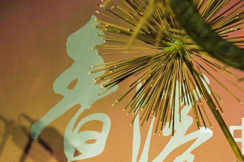 為了新片「潘恩:航向夢幻島」亞洲宣傳前往香港的男星休傑克曼,28日晚間來到香港大坑參加當地中秋傳統活動「舞火龍」。由於這是首次有國際巨星參與地方觀光盛事,吸引許多民眾圍觀,休傑克曼也展現親民風範,熱...