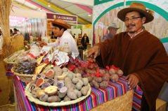 秘魯/1粒種子等500年 馬鈴薯紅了秘魯