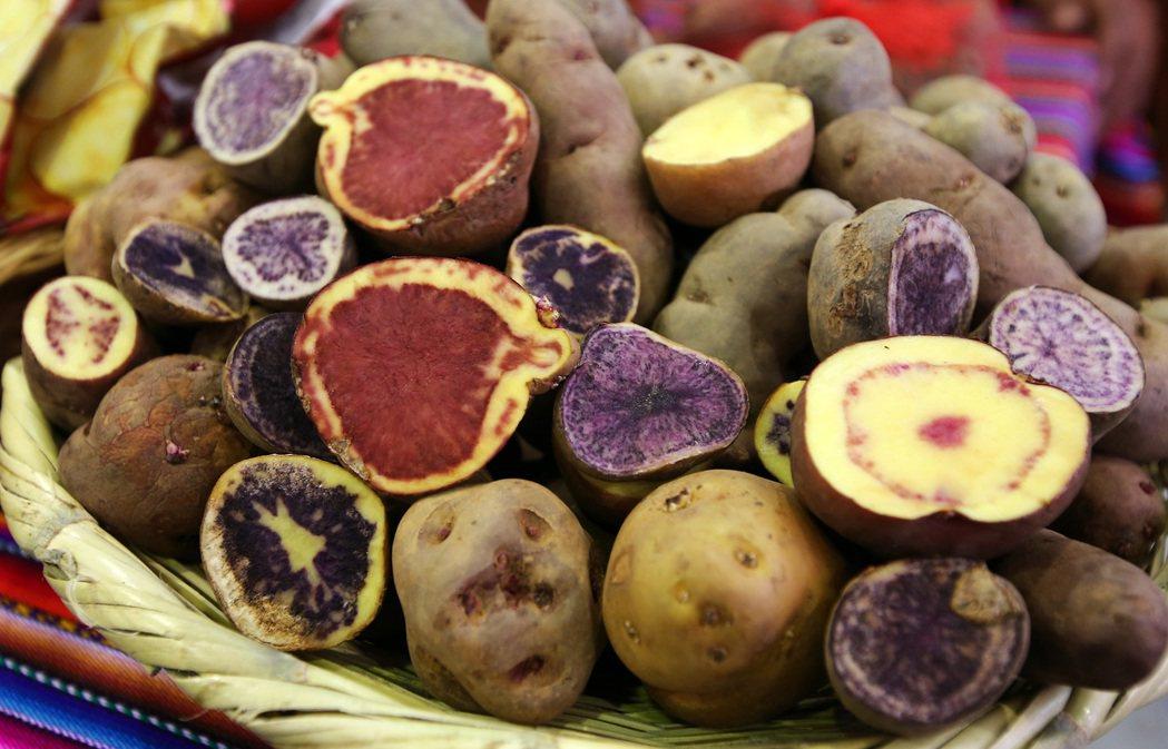 馬鈴薯。 特派記者陳柏亨/秘魯攝影