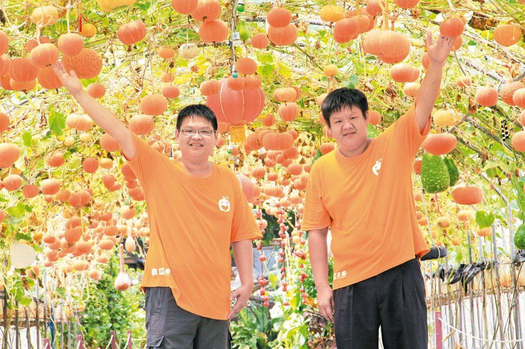 旺山休閒農場林智凱(左)和林致頡(右)兄弟,研發南瓜栽種技術,讓旺山農場全年都有...