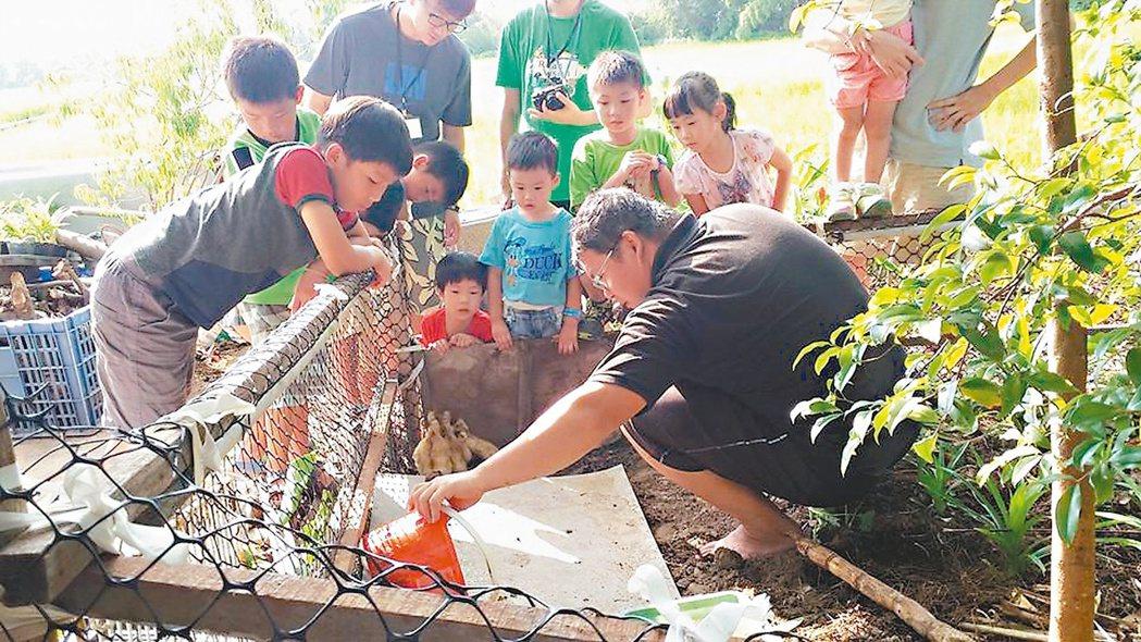 馮聖方帶著前來農場的小朋友體驗農務、選摘福壽螺。 圖/馮聖方提供