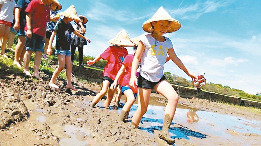 馮聖方帶著前來農場的小朋友體驗農務。 圖/馮聖方提供