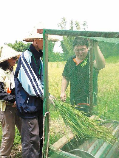 馮聖方帶著前來農場的小朋友體驗,體驗收割稻米的農務。 圖/馮聖方提供