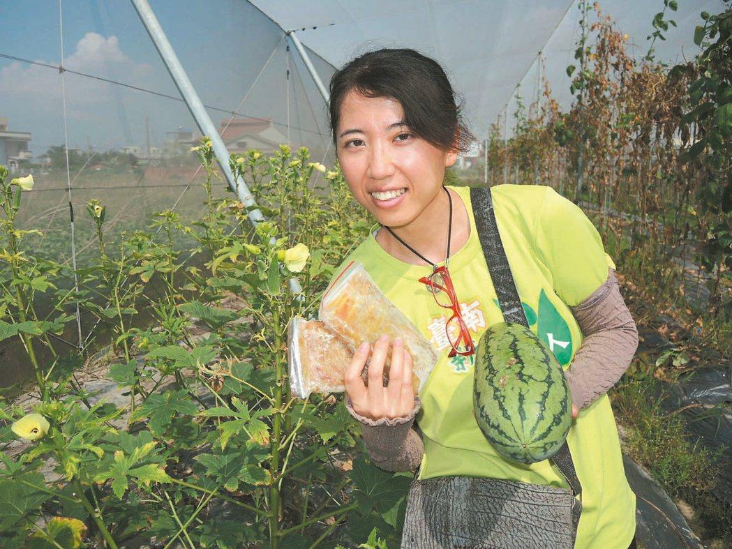 長相甜美的新農人鄒佩如,目前在網室種植秋葵,並研發出「西瓜青」。 記者吳政修/攝...