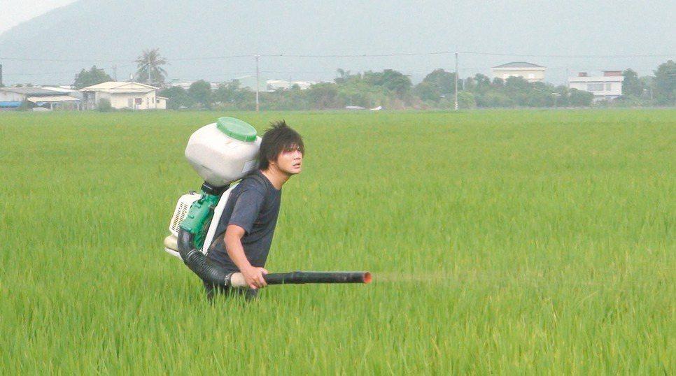 青農謝銘鍵說喜歡用輕鬆的方式種田,就算灑肥料遇上陰雨天,讓他反而更覺適合工作。 ...