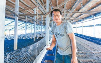 吳鴻基為了父母放棄年薪百萬的工作,回鄉養鴨,卻將研究精神帶回,致力改良鴨舍設計。...