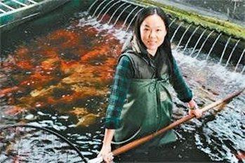 鍾瑩瑩從拿畫筆到返鄉養錦鯉,成功將傳統產業推向國際。 圖/擷取自鍾瑩瑩粉絲頁