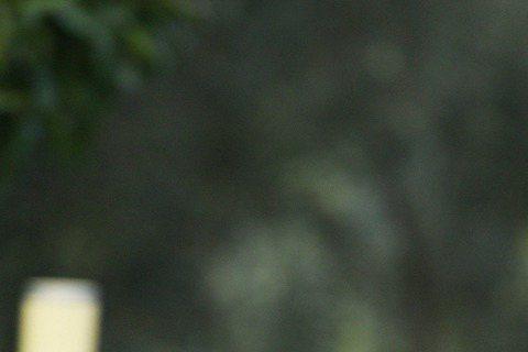 李敏鎬12月中將來台停留2天1夜,為代言的巧克力品牌站台,他日前為拍攝廣告首赴義大利,他表示對羅馬的印象一直是個充滿歷史文化的城市,最愛當地建築,光是散步不血拚也能讓他相當滿足。