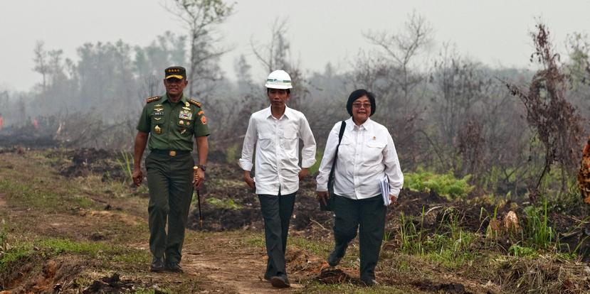 印尼本有禁止焚燒森林的法律,但因為土地所有權的爭議,加上腐敗與去中央化的政府分權...