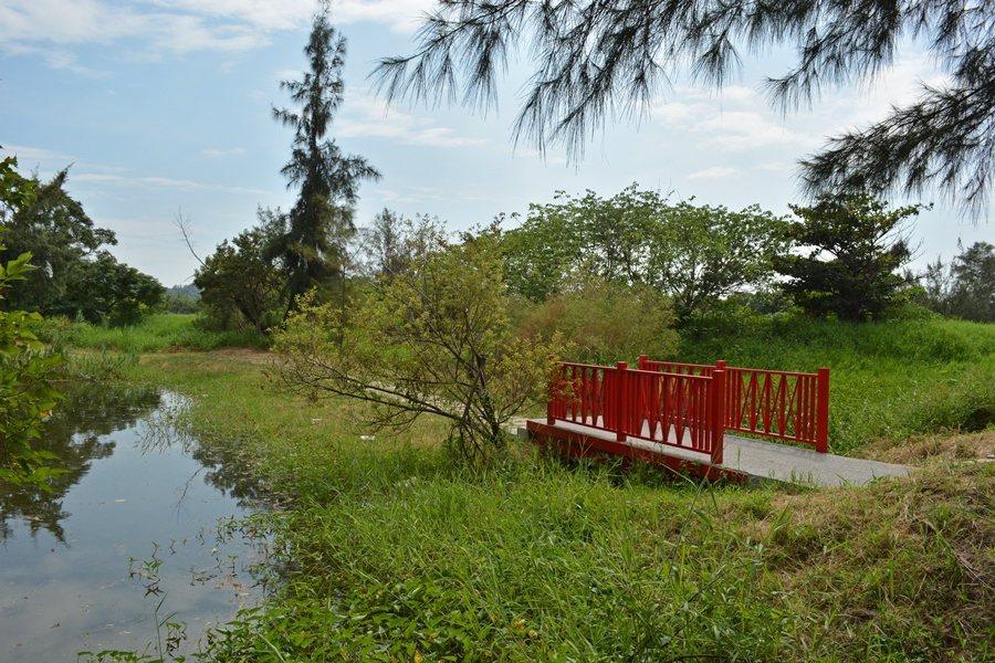 中港溪濕地長青之森環湖步道與紅橋。