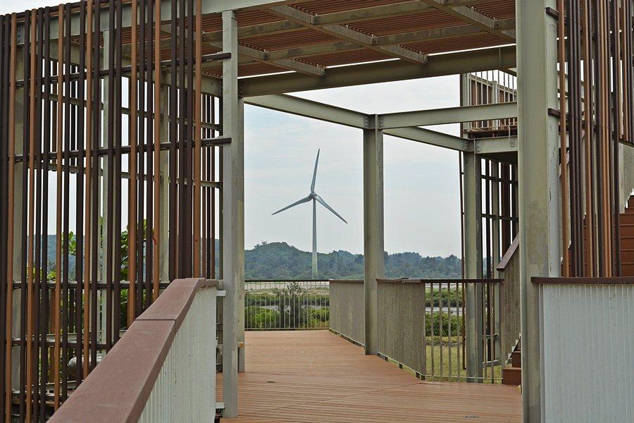 中港溪濕地紅樹林的瞭望台。