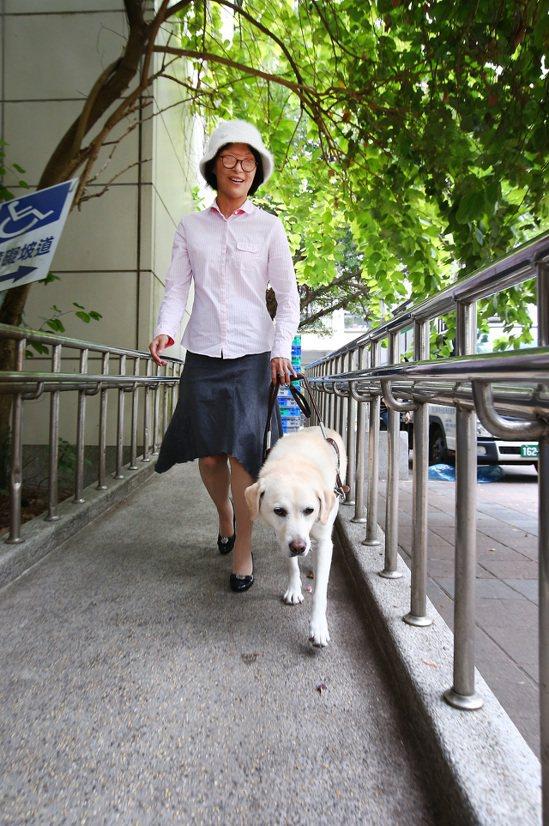 導盲犬塔希陪伴張雅惠上山下海,走遍各地。記者陳柏亨/攝影