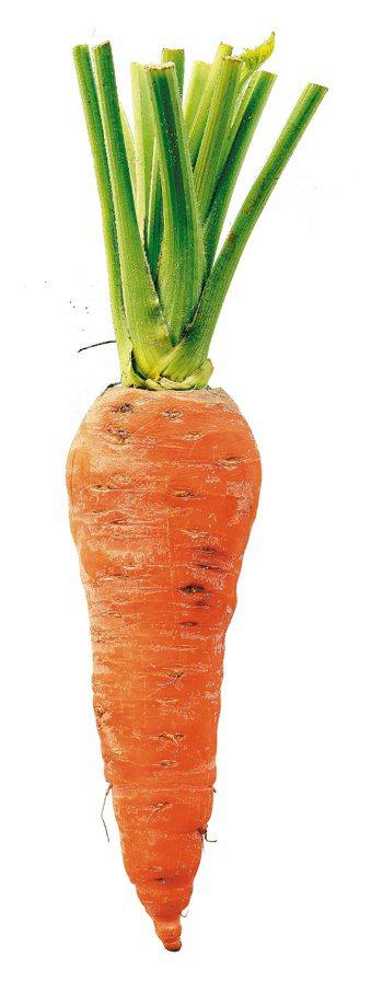 用胡蘿蔔、地瓜製作嬰兒副食品,最好新鮮現做洗乾淨,反覆解凍易致細菌感染。 記者陳...