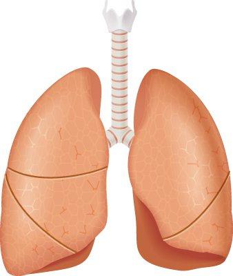 生活規律不抽菸 就醫竟檢出肺癌 圖廖珮涵繪製