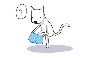王人俊/當心!主張同性戀不自然,可能導致你不能穿褲子!